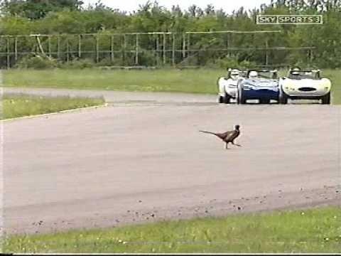 Dave Devine hits pheasant Ginettas at Thruxton 2005
