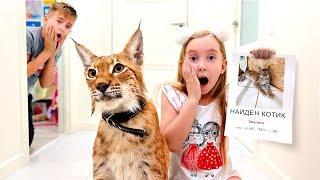 Катя НАШЛА Котёнка! Почему она РАССТРОЕНА?  детский скетч на Мы семья
