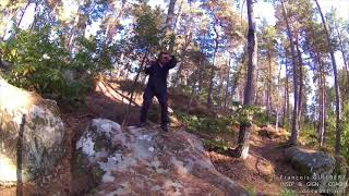 F r a n ç o i s   G U I L B E R T  INSEP & GIGN · COACH · Shadow boxing in the wood