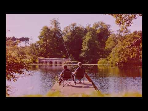 Sam Fender |||| Spit Of You (Lyric video)