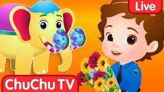 ChuChuTV Surprise Eggs Toys live stream on Youtube.com