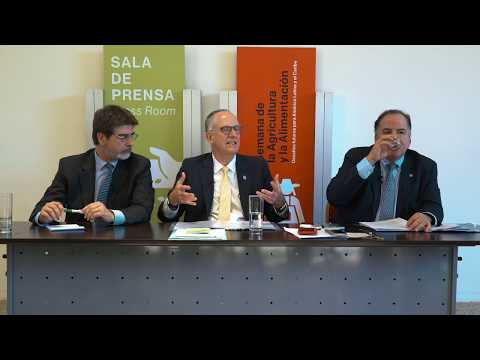 Conferencia de prensa FAO, WFP y FIDA
