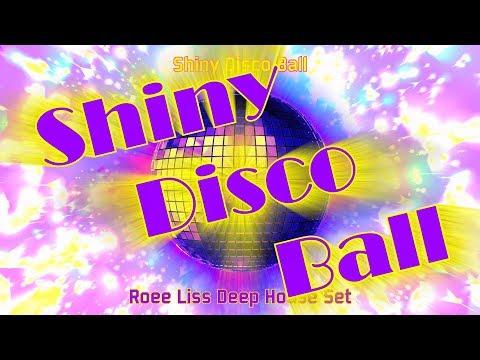 Shiny Disco Ball  Deep House Set  Roee Liss