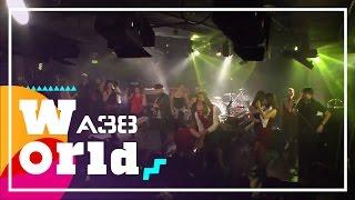Shantel & Bucovina Club Orkestar - Andante Levante  // Live 2015 // A38 World