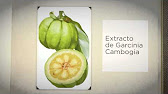 Garcinia cambogia gnc hong kong photo 10