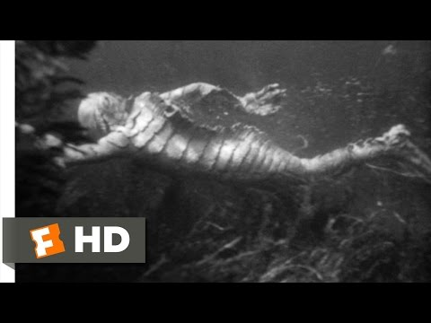 Creature from the Black Lagoon (7/10) Movie CLIP - Underwater Hunt (1954) HD