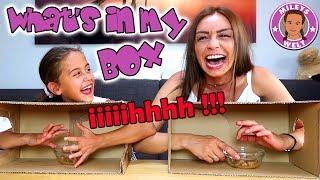WHAT'S IN MY BOX CHALLENGE - von ekelig bis gefährlich !! | MILEYS WELT