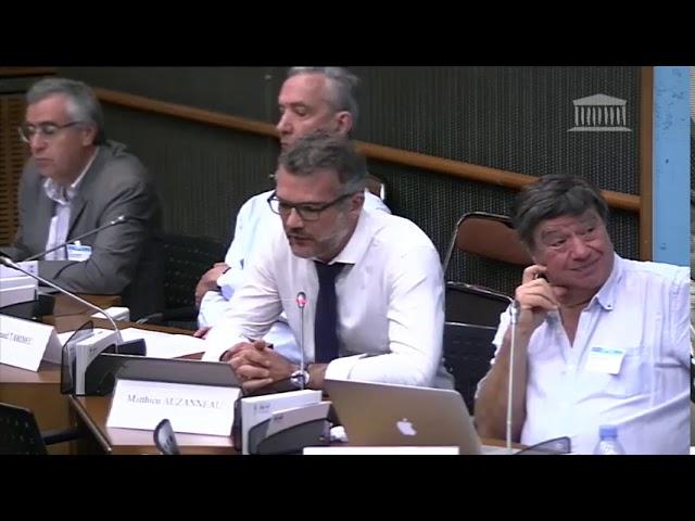 Audition de Matthieu Auzanneau à l'Assemblée nationale (1/2) #1