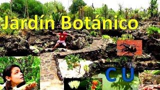 -*El Jardín Botánico de CU /UNAM/ De paseo con Avilunatiko*-