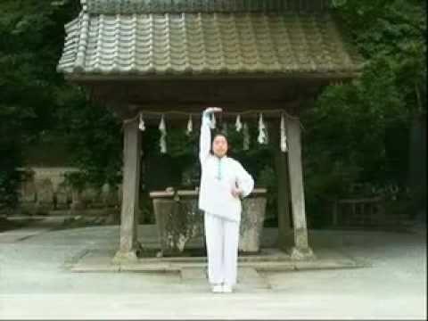 TaoYoga Arts™ ~ 8 Immortal TaoYin