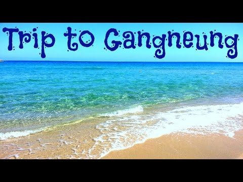 TBT: Trip to Gangneung - VLOG