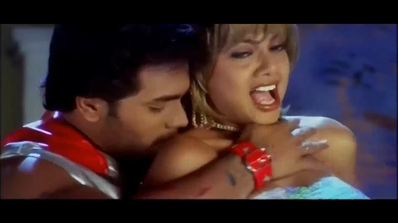Swathi Verma Hot Song || Kattiko Kattiko || Siddu || Kannada new kannada movies | Kannada songs