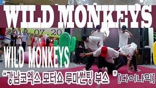 코엑스 모터쇼 와일드몽키즈(WILD MONKEYS) 비…