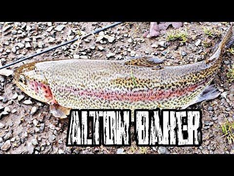 Alton Baker Beauties.