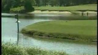Caledonia & True Blue Golf Courses - Myrtle Beach, SC