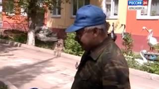 Красноярский пенсионер украсил двор фигурками из автомобильных шин(, 2014-06-24T05:49:15.000Z)