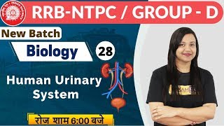 Class-28|| RRB NTPC (CBT-1) || Biology || By Amrita Ma'am || Human Urinary System & Questions