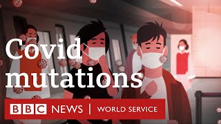 Covid-19: Could mutations to the coronavirus make it more dangerous? - BBC World Service