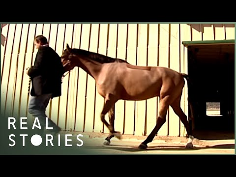 How The Super Rich Live (Wealth Documentary) | Real Stories