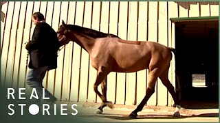 how-the-super-rich-live-wealth-documentary-real-stories