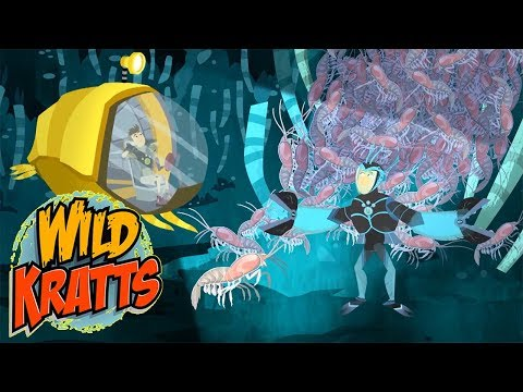 ► Wild Kratts S5 HD - Creatures of the Deep Sea - Wild Kratts Full Episodes TV Show
