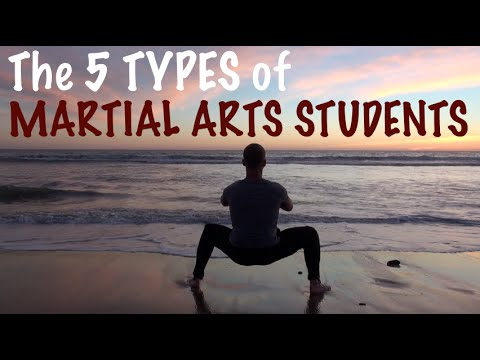 The 5 Types of Martial Artists!  Which One Are YOU?