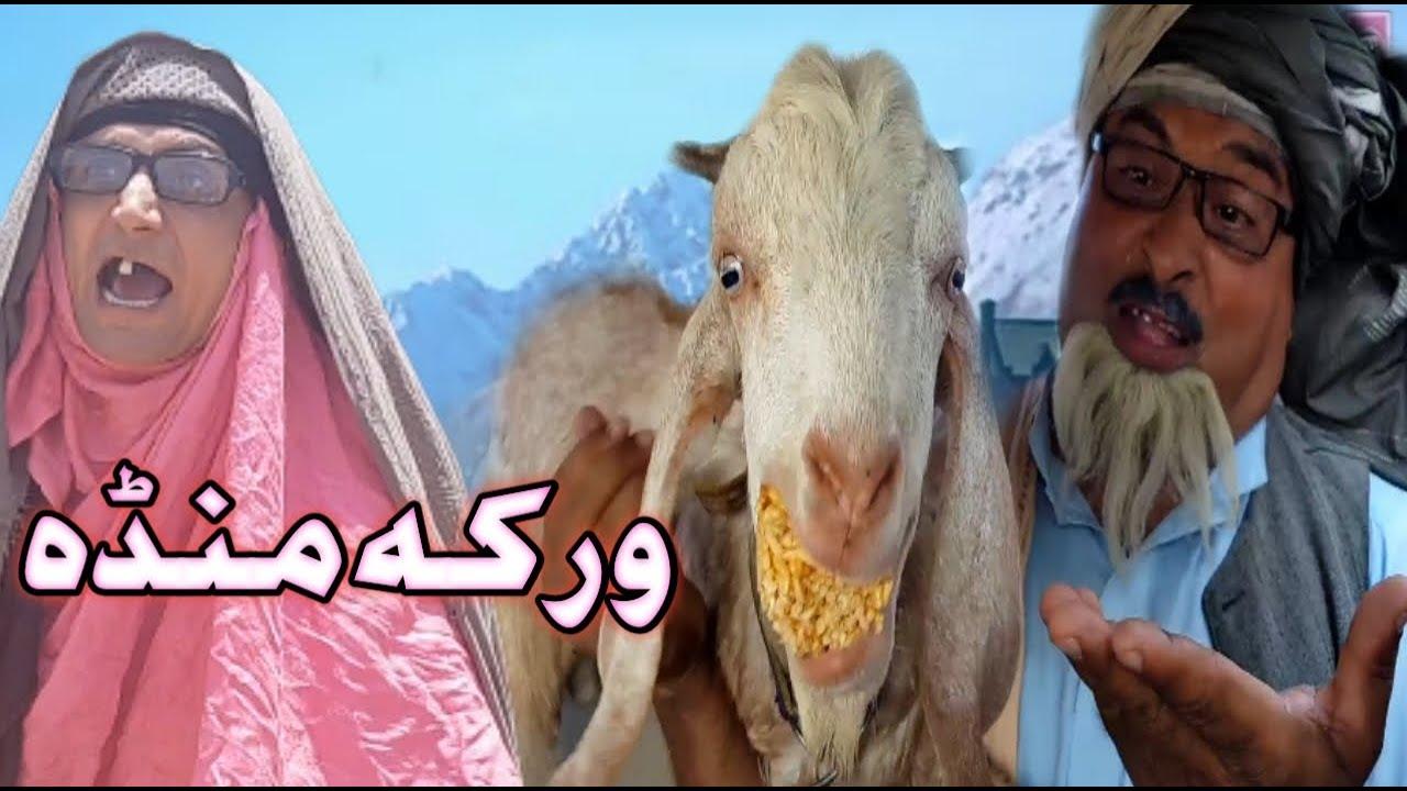 Warka Manda Pashto Funny Video By Sherpao Vines 2021