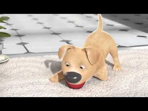 The Present - Animation