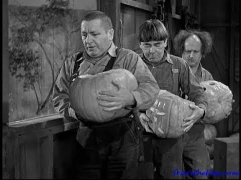 The Three Stooges 079 The Yoke's On Me 1944 Curly, Larry, Moe