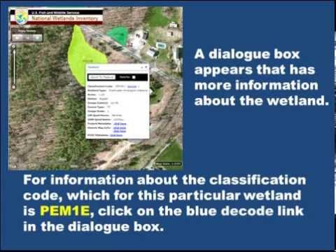 Wetlands Mapper