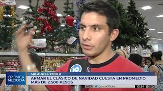 Salado el pinito: armar el árbol navideño cuesta más de 2500 pesos