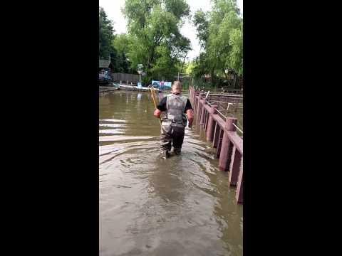 Flood at Alligator Park