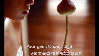 The Rose - Bette Midler (歌詞字幕)English & Japanese Lyrics