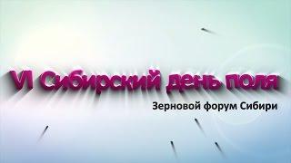 видео В VI ПОЛЕ