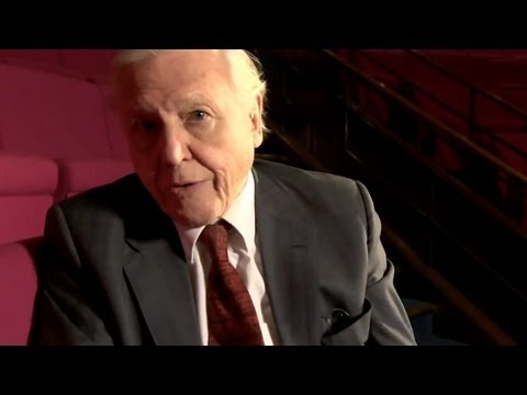 Sir David Attenborough Interview - Presenting the 1973 CHRISTMAS LECTURES