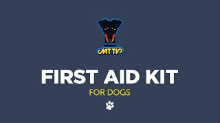 Dog First Aid Kit, Part 1, The Basics, Manchester Terriers MT TV