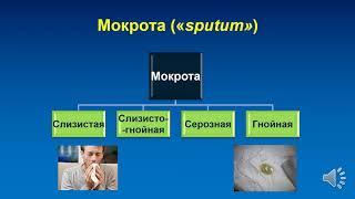 ПВБ. Синдромы заболеваний органов дыхания.