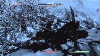 Skyrim rare Ebony Warrior quest