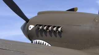 Warbird Engine Starts — Props & V-12's