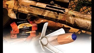 Какие бывают пули для охоты