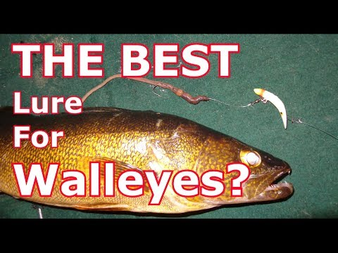 The Best Walleye Lure That You're NOT Using