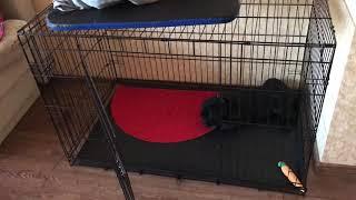 Клетка для щенка. Безопасность собаки. Сохранность квартиры !