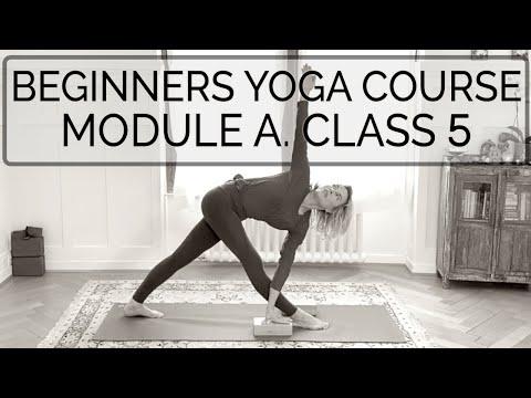 Iyengar Yoga Beginners. Class 5. Module A. 48 min. CdR #onlineyogateaching #beginnersyogacourse