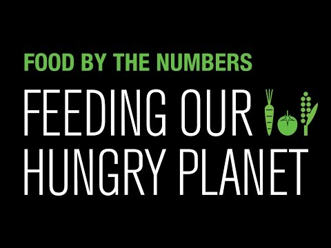 Food By The Numbers: Feeding Our Hungry Planet | National Geographic