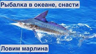 Зимняя рыбалка в океане Рыболовные снасти Жизнь на яхте Cupiditas