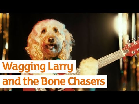 Wagging Larry and the Bone Chasers | Sainsbury's
