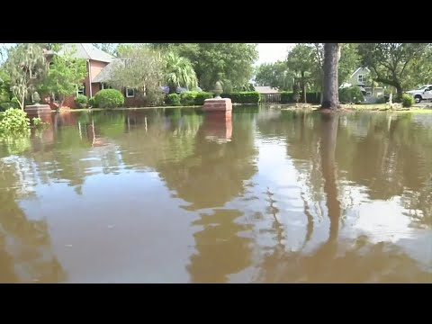 West Ashley Homeowners Sick Of Flooding