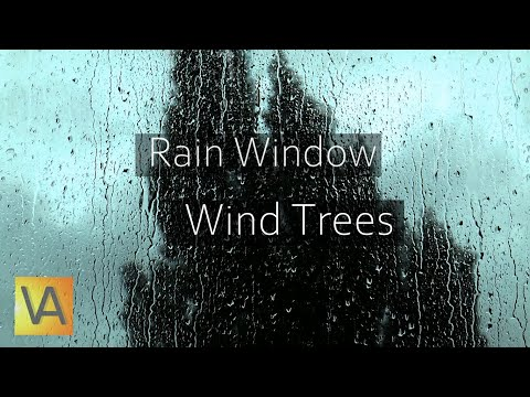 Rain Hitting Window with Wind Through Trees Sound