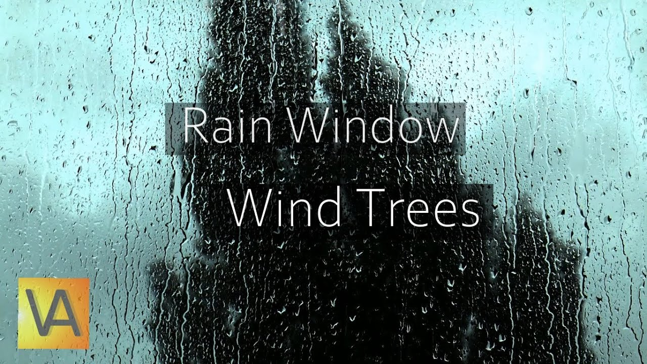 rain hitting window with wind through trees sound youtube