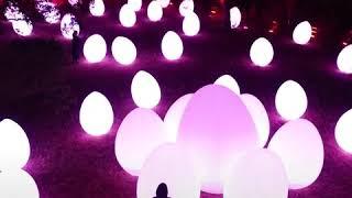 【TikTok】メッツァビレッジ~森と湖の光の祭~(チームラボ)